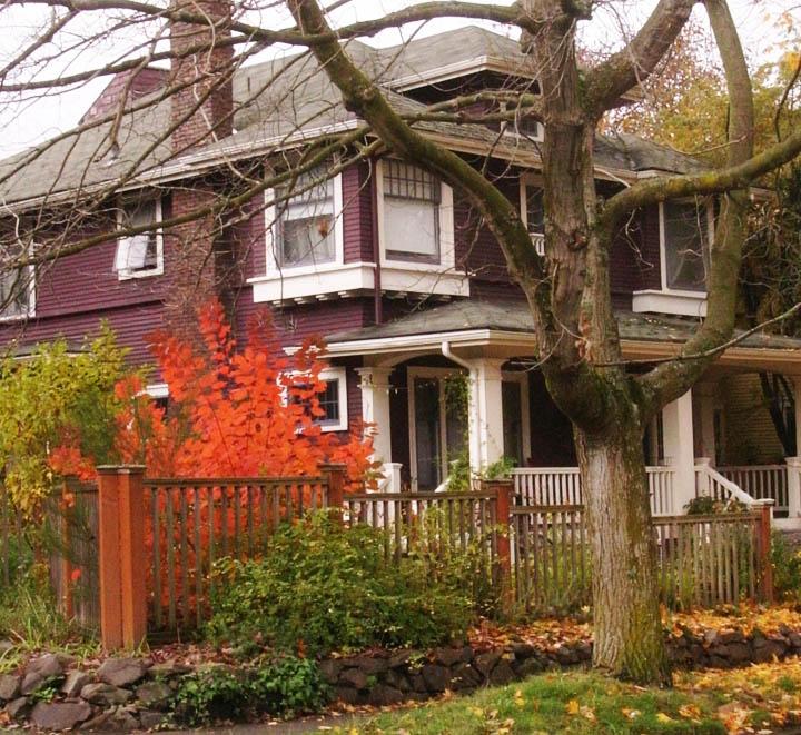 Best Plant for Seattle Fall Color | Erin Lau Design | Seattle ...