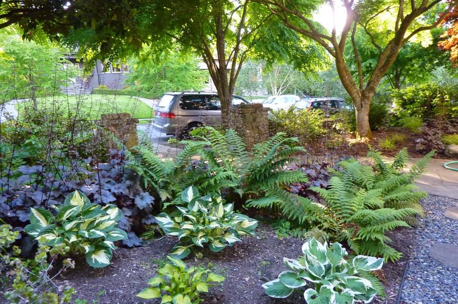 Landscape design capitol hill dc for Dc landscape design