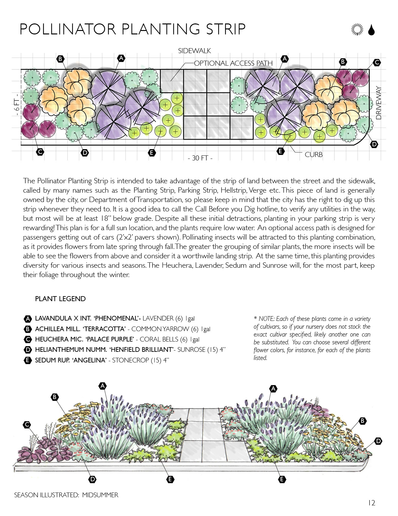 Free Coloring Pages Of Pollinator